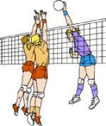 volleyball clipart.gif